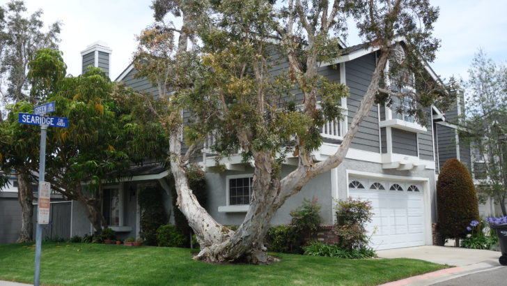 Searidge Townhomes Huntington Beach